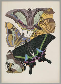 Butterfly Pochoir Prints - 10