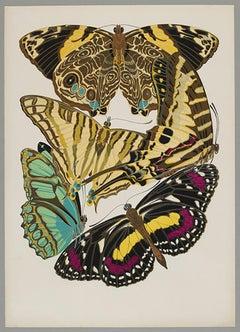 Butterfly Pochoir Prints - 12
