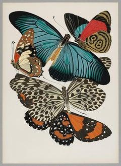 Butterfly Pochoir Prints - 2