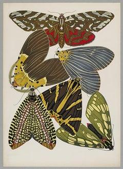 Butterfly Pochoir Prints - 3