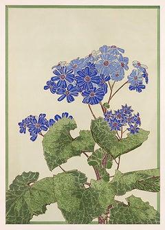 Floral Pochoir Prints - 4