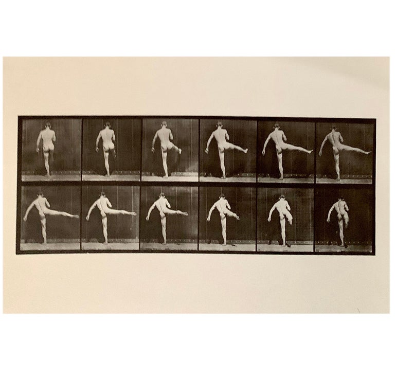 Modern Eadward Muybridge Animal Locomotion Plate 369 HelioGravure Black White Print For Sale
