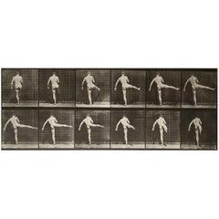Eadward Muybridge Animal Locomotion Plate 369 HelioGravure Black White Print