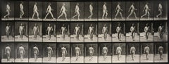 Animal Locomotion: Plate 11 (Nude Man Striding), 1887