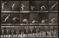 Animal Locomotion: Plate 163 (Man Leaping)