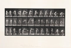 """Animal Locomotion, Plate 402"", Collotype by Eadward Muybridge, 1887"