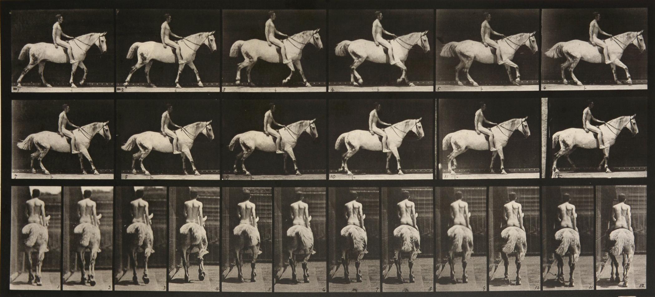 Animal Locomotion: Plate 582 (Nude Man Riding Horse), 1887 - Eadweard Muybridge