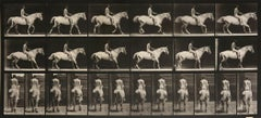 Animal Locomotion: Plate 582 (Nude Man Riding Horse), 1887