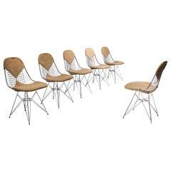 Eames Bikini DKR Wire Chair in Original Canvas, Set of Six