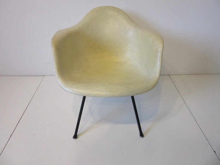 An early second generation parchment fiberglass arm shell chair with large shock mounts and black iron base in the rare lower lounge height . Having slip on black boot feet of rubber and metal manufactured by the Herman Miller Furniture company in
