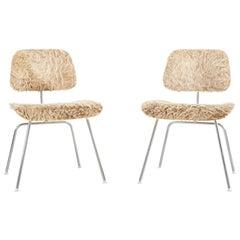 Eames for Herman Miller DCM Chairs in Longhair Brazilian Cowhide