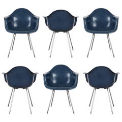 Eames Navy Blue Dax Dining Chair for Herman Miller, 1960s
