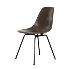 Eames Seal Brown DSX Dining Chair for Herman Miller