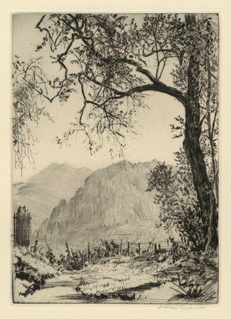 Stetson Crawford created this etching of olive trees in an edition of 30 Two olive trees  dominate the European landscape offset by rolling hills   Earl Stetson Crawford, painter, printmaker, muralist and illustrator, was born in Philadelphia on