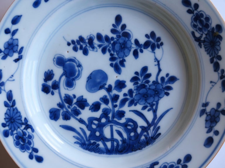 Early 18th Century Chinese Porcelain Blue and White Plate or Dish, Qing Ca 1730 For Sale 8