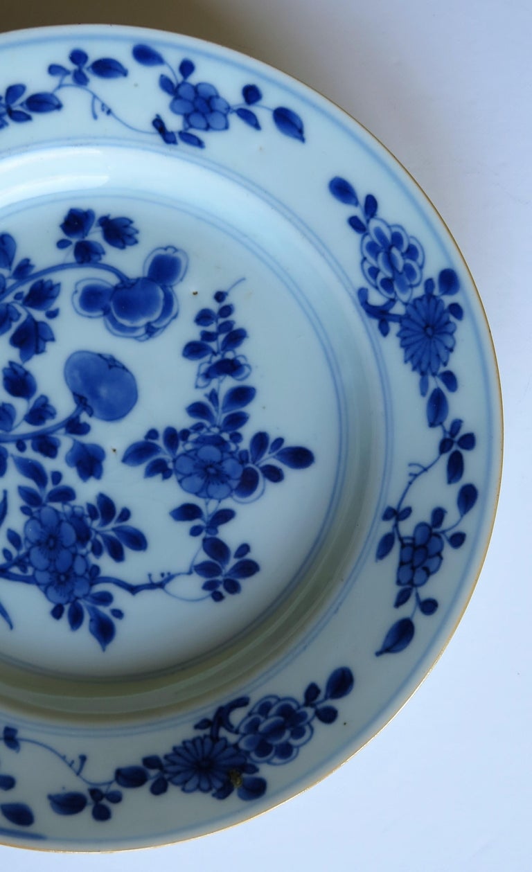 Early 18th Century Chinese Porcelain Blue and White Plate or Dish, Qing Ca 1730 For Sale 11