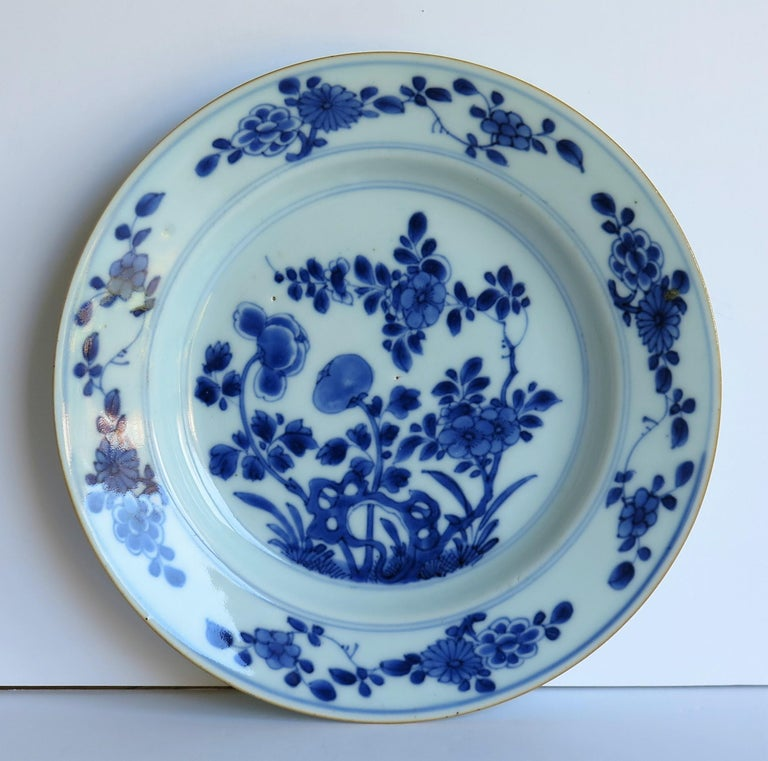Early 18th Century Chinese Porcelain Blue and White Plate or Dish, Qing Ca 1730 For Sale 2