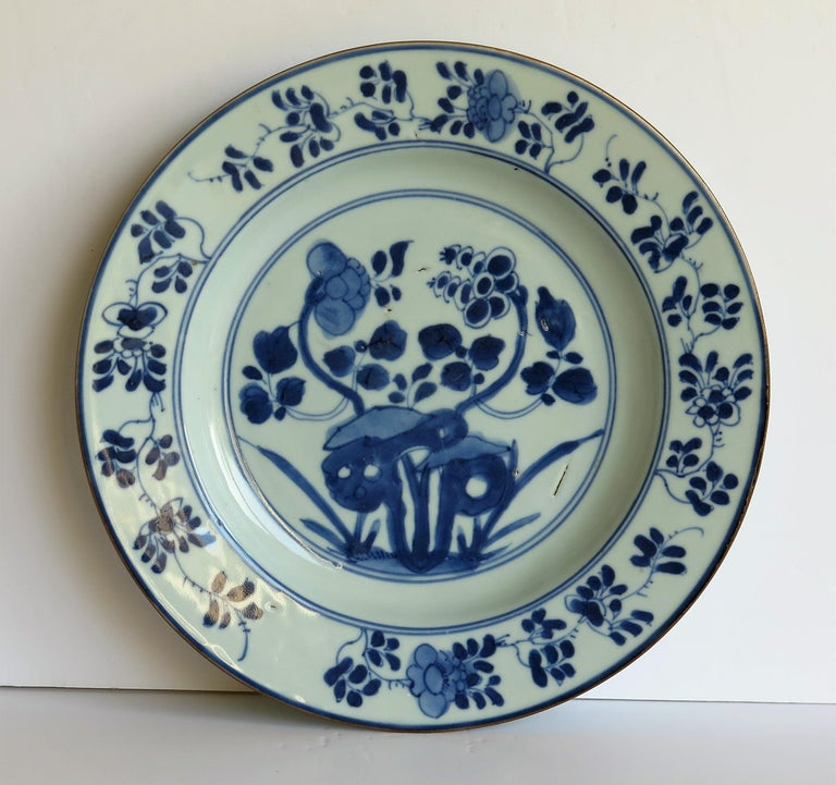 Early 18th Century Chinese Porcelain Plate Blue and White, Qing, circa 1730 For Sale 1