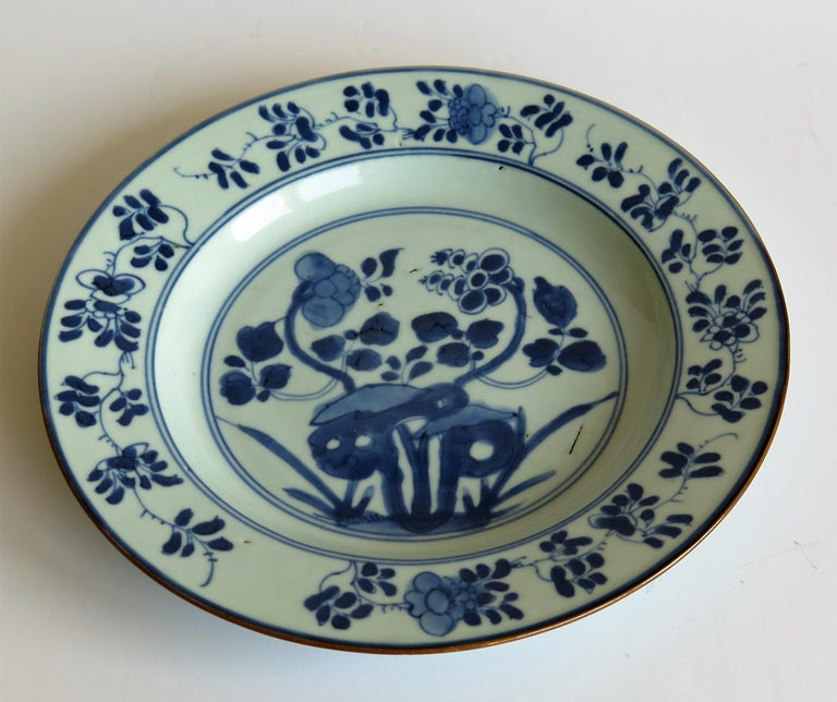 Early 18th Century Chinese Porcelain Plate Blue and White, Qing, circa 1730 For Sale 4