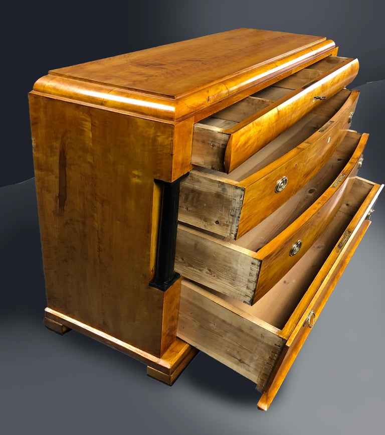 19th Century Birch Wood and Brass Biedermeier German Commode For Sale 2