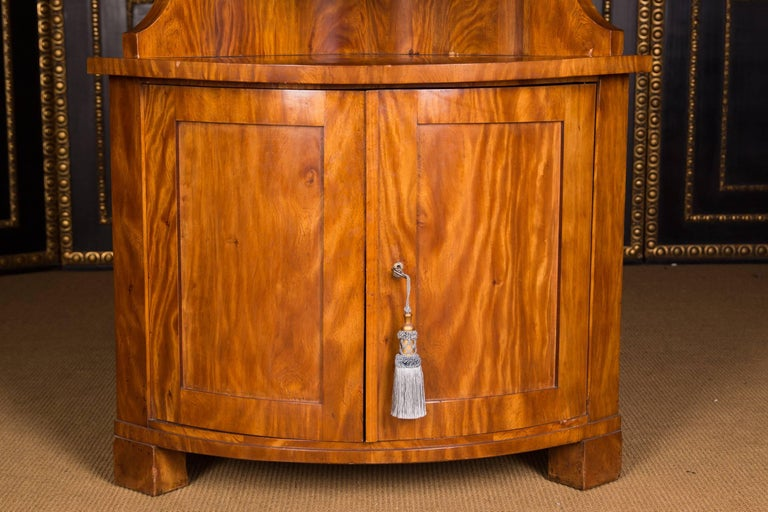 Early 19th Century Classic Biedermeier Corner Vitrine from South Germany In Good Condition For Sale In Berlin, DE