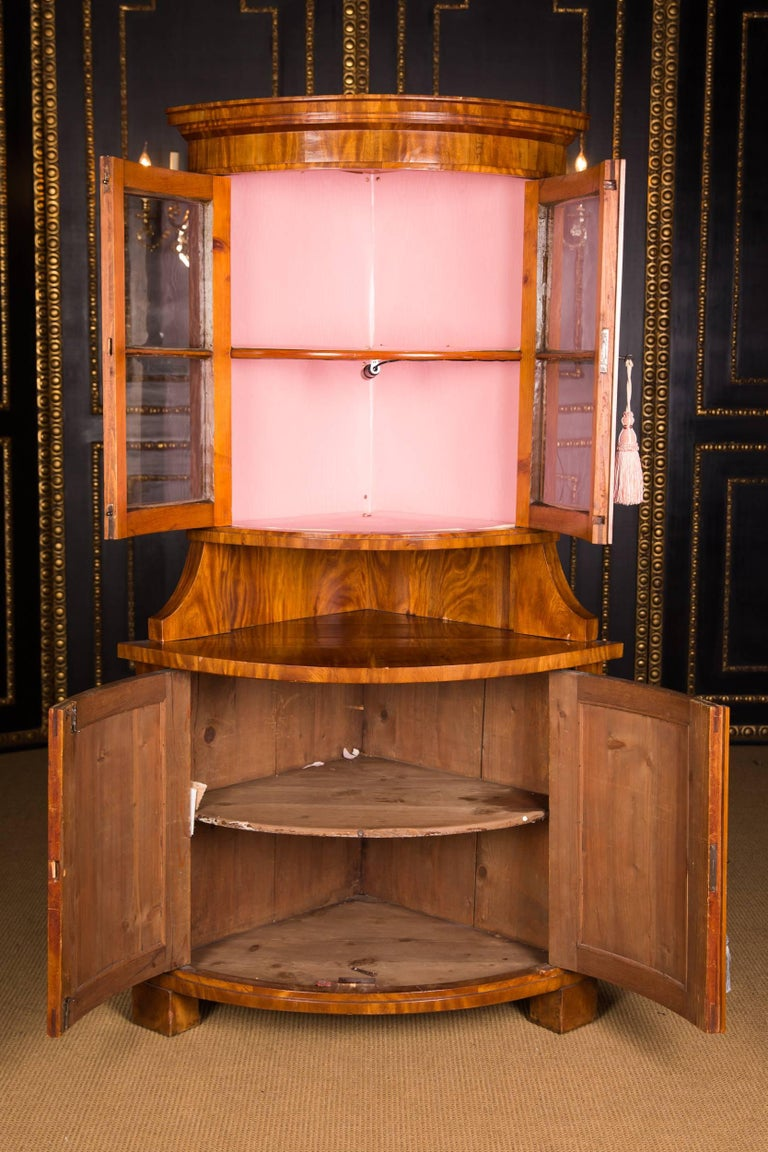 Early 19th Century Classic Biedermeier Corner Vitrine from South Germany For Sale 2