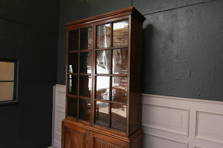 Early 19th Century English China Cabinet Made of Mahogany For Sale 2