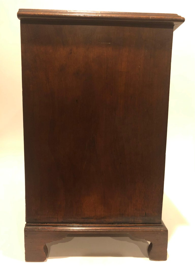 Early 19th Century English Regency Mahogany Six-Drawer Specimen Chest For Sale 2