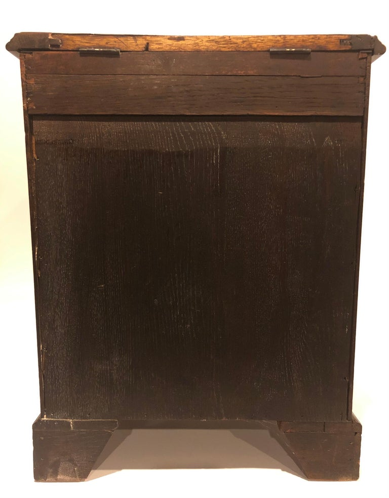 Early 19th Century English Regency Mahogany Six-Drawer Specimen Chest For Sale 3