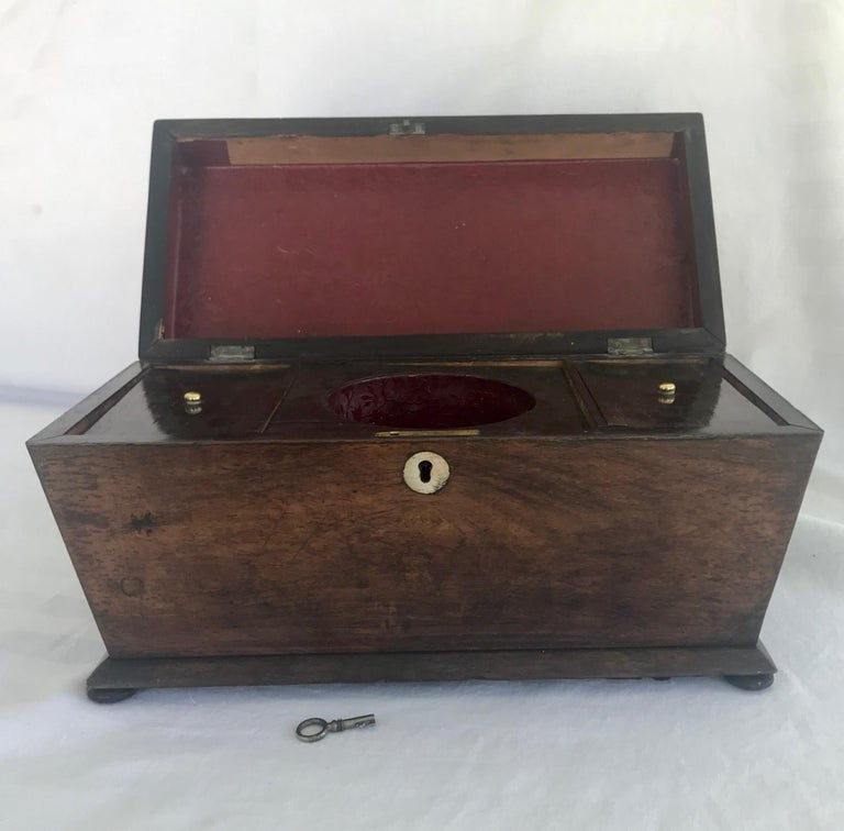 Early 19th century English rosewood tea caddy