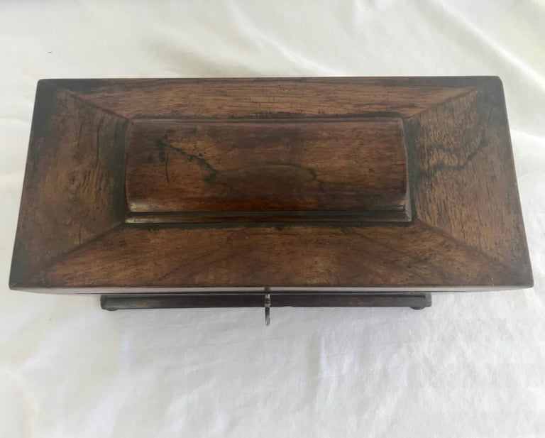 Early 19th Century English Rosewood Tea Caddy For Sale 1