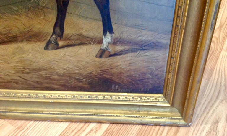 Early 19th Century English Study of a Horse For Sale 6