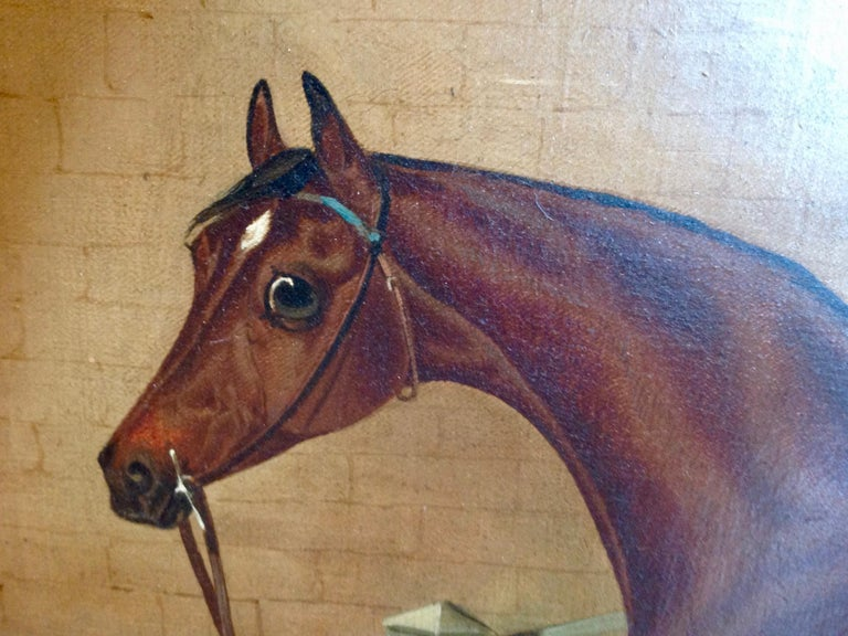 Canvas Early 19th Century English Study of a Horse For Sale