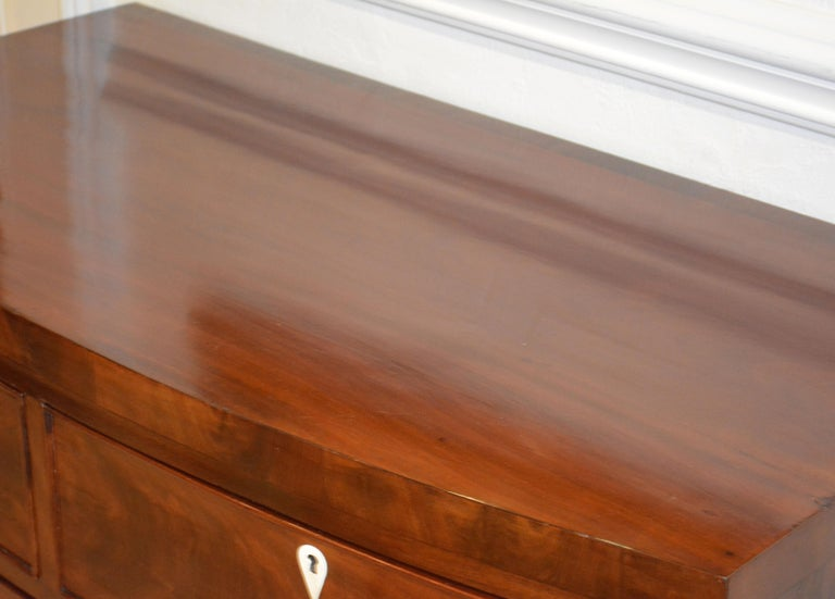 Early 19th Century George III Bow Front Caddy Top Mahogany Chest of Drawers For Sale 4