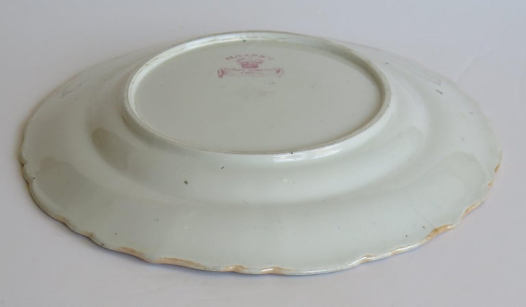 Early 19th Century Masons Ironstone Plate in Ragged Rose Pattern, Circa 1830 For Sale 6