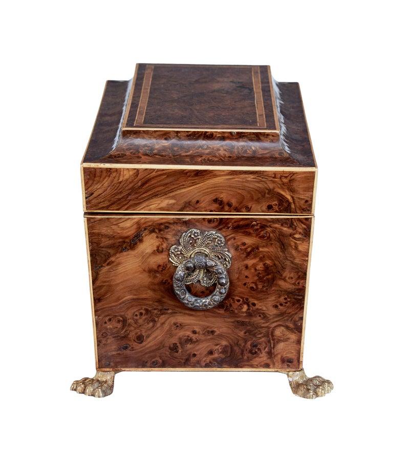 English Early 19th Century Regency Burr Yew Tea Caddy For Sale
