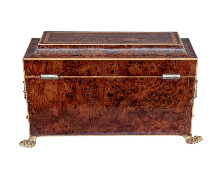 Cross-Banded Early 19th Century Regency Burr Yew Tea Caddy For Sale