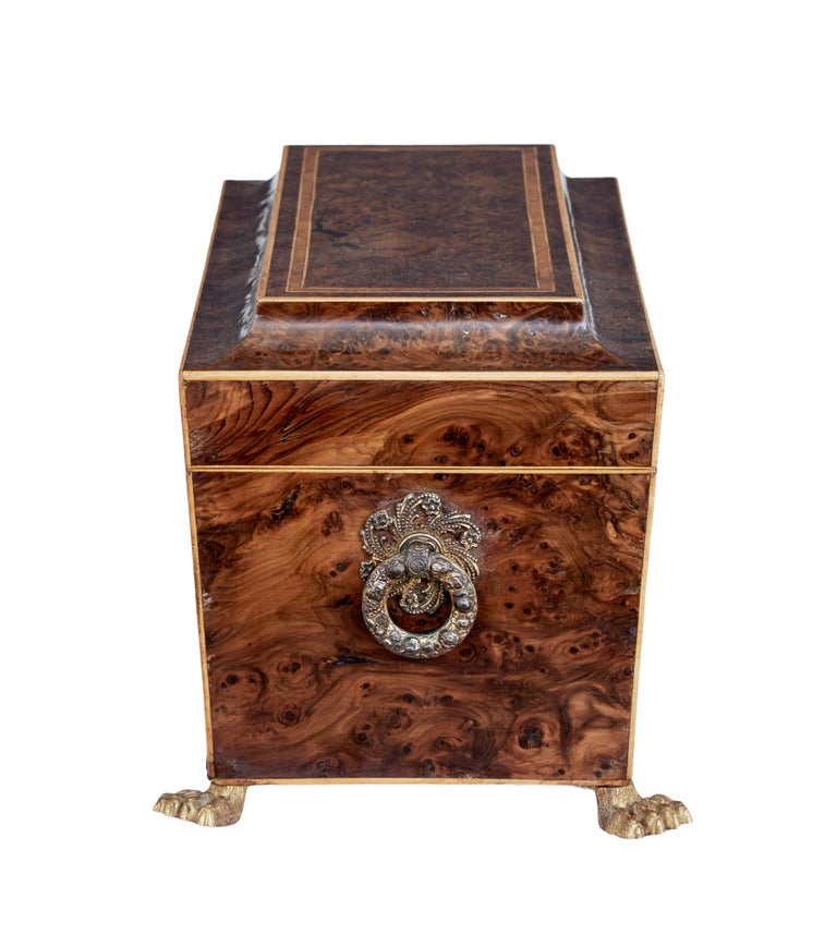 Early 19th Century Regency Burr Yew Tea Caddy In Good Condition For Sale In Debenham, Suffolk