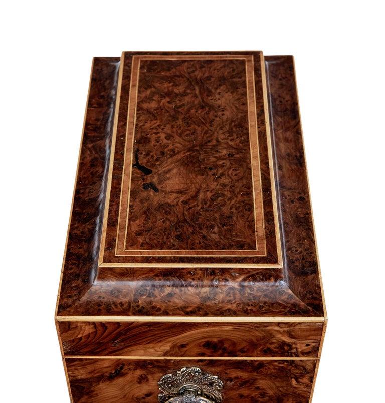 Early 19th Century Regency Burr Yew Tea Caddy For Sale 1