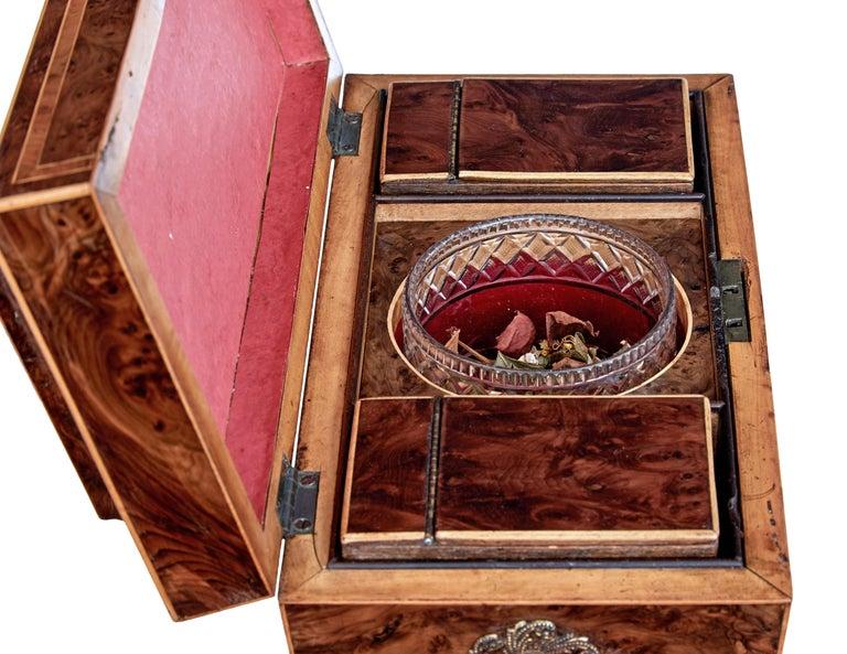 Early 19th Century Regency Burr Yew Tea Caddy For Sale 2