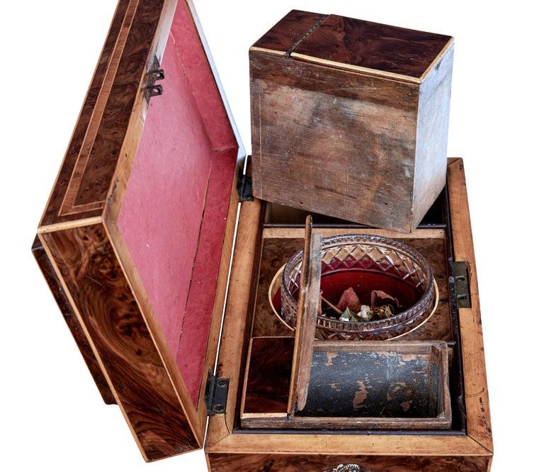 Early 19th Century Regency Burr Yew Tea Caddy For Sale 3
