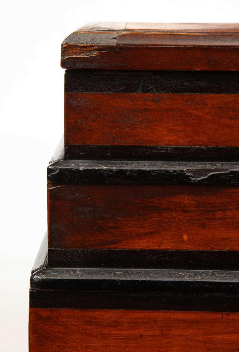 Early 19th Century, Unusual Biedermeier Three Compartment Box For Sale 6