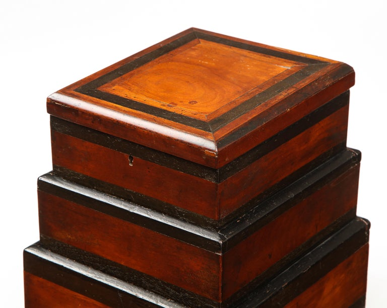 Early 19th Century, Unusual Biedermeier Three Compartment Box For Sale 8