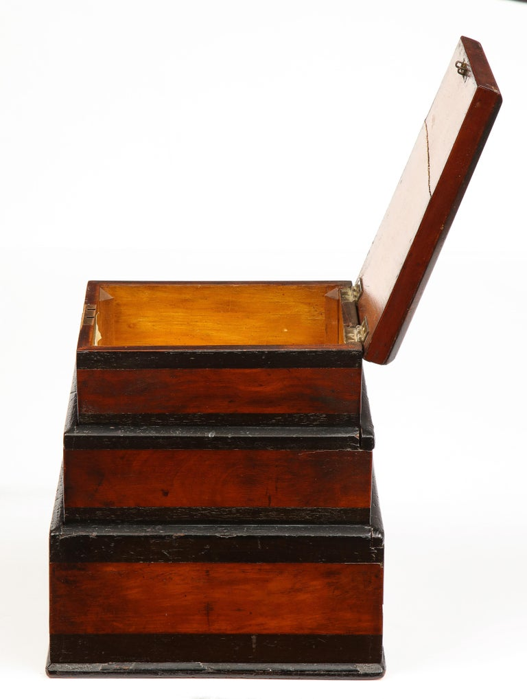 Early 19th Century, Unusual Biedermeier Three Compartment Box For Sale 4