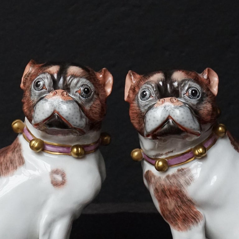 Rococo Male and Female Pair of Dresden Saxon Porcelain Pug Dog Figurines For Sale