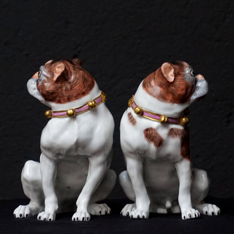 Glazed Male and Female Pair of Dresden Saxon Porcelain Pug Dog Figurines For Sale
