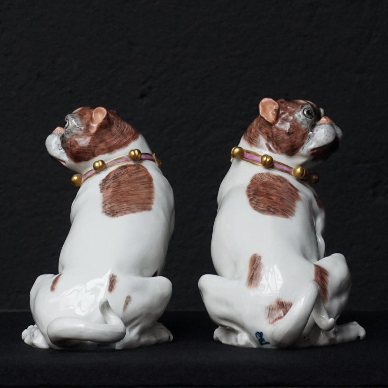 Male and Female Pair of Dresden Saxon Porcelain Pug Dog Figurines In Excellent Condition For Sale In Haarlem, NL