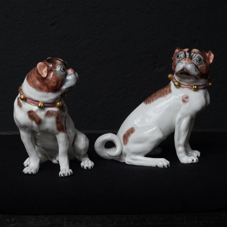20th Century Male and Female Pair of Dresden Saxon Porcelain Pug Dog Figurines For Sale