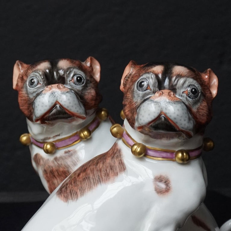 Male and Female Pair of Dresden Saxon Porcelain Pug Dog Figurines For Sale 1