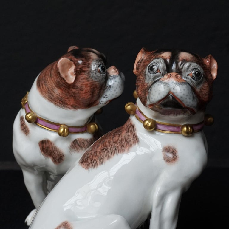 Male and Female Pair of Dresden Saxon Porcelain Pug Dog Figurines For Sale 2